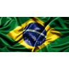 BRASILIA SANTOS