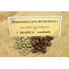 Káva INDONESIA JAVA BLAWAN