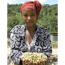 Káva ETHIOPIA YIRGACHEFFE ORGANIC